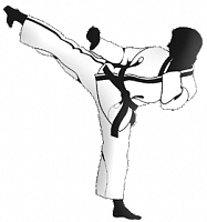 TIMING KARATE CLUB ECHIRE