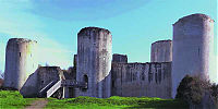 Château Fort du Coudray Salbart
